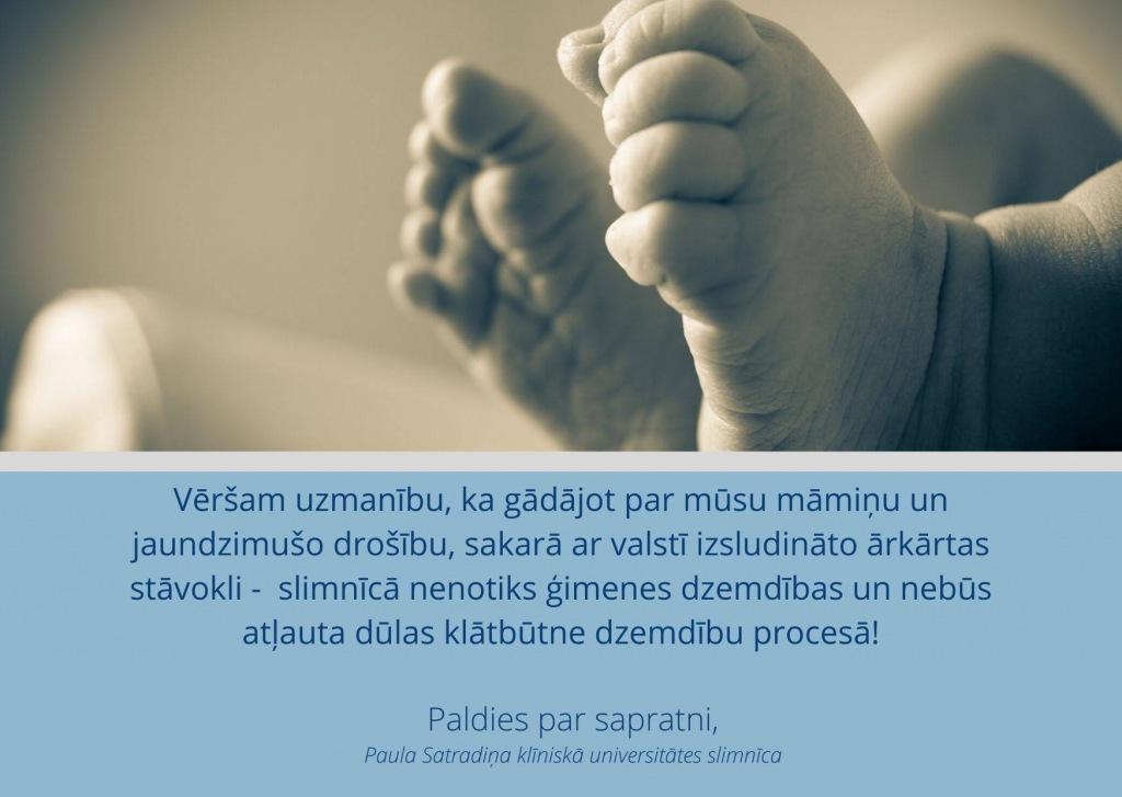 Dzemdibas_weblapai.jpg